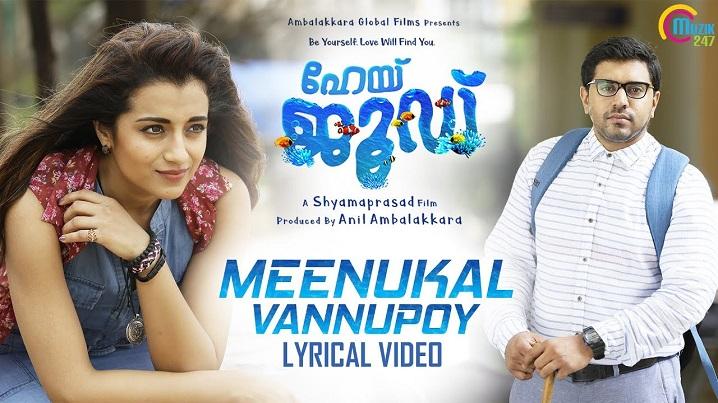 Meenukal Vannupoy Song Lyric