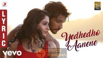 Yedhedho Aanenea Song Lyrics