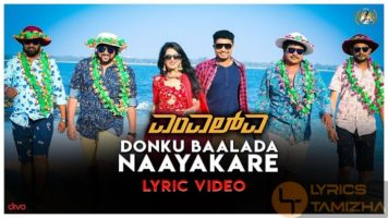 Donku Baalada Naayakare Song Lyrics